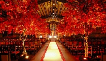 Fall Wedding: tips for planning